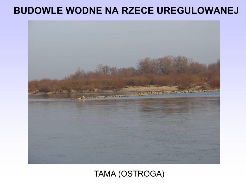 BUDOWLE WODNE NA RZECE UREGULOWANEJ TAMA (OSTROGA)