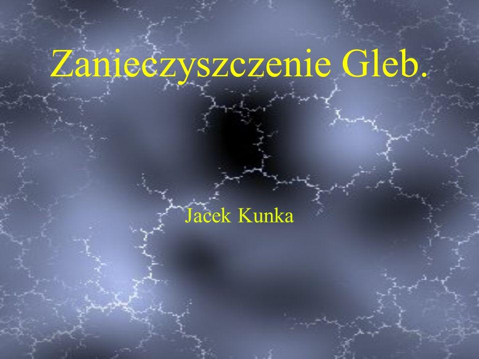 Zanieczyszczenie Gleb. Jacek Kunka