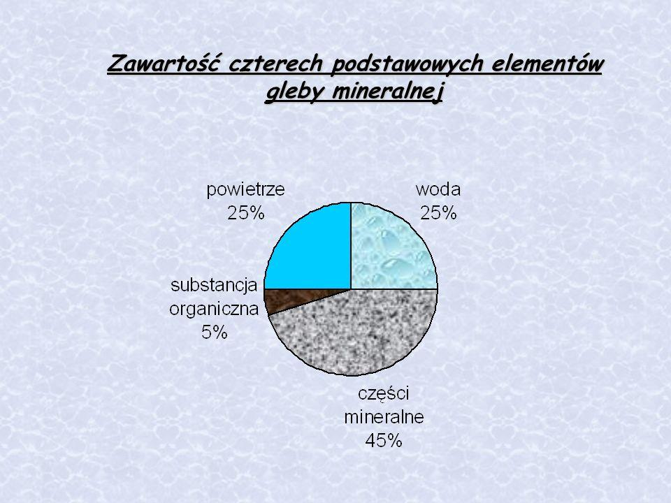 Zawartość czterech podstawowych elementów gleby mineralnej