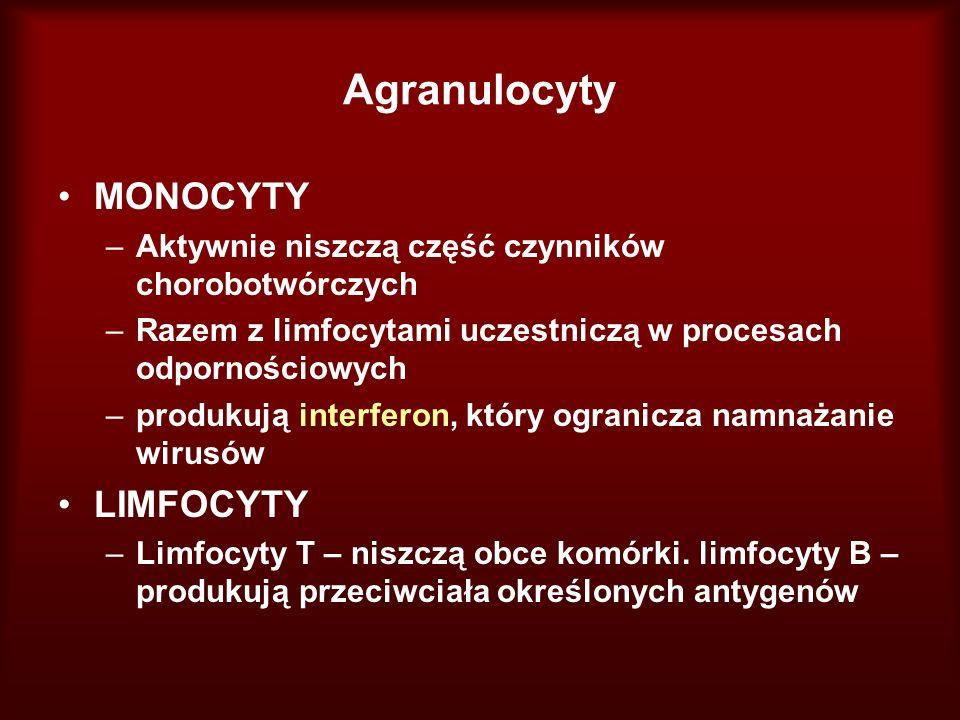 Agranulocyty MONOCYTY –Aktywnie niszczą część czynników chorobotwórczych –Razem z limfocytami uczestniczą w procesach odpornościowych –produkują inter
