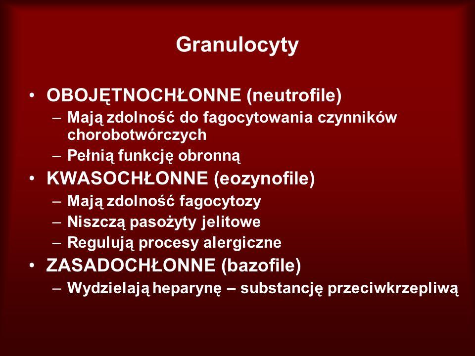 Granulocyty OBOJĘTNOCHŁONNE (neutrofile) –Mają zdolność do fagocytowania czynników chorobotwórczych –Pełnią funkcję obronną KWASOCHŁONNE (eozynofile)