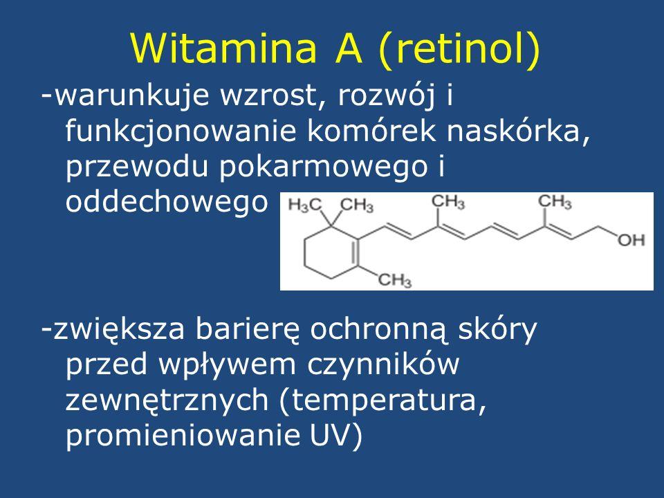 Witamina A (retinol) -warunkuje wzrost, rozwój i funkcjonowanie komórek naskórka, przewodu pokarmowego i oddechowego -zwiększa barierę ochronną skóry