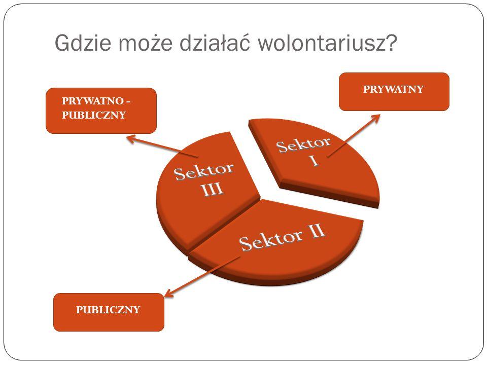 Gdzie może działać wolontariusz PRYWATNO - PUBLICZNY PUBLICZNY PRYWATNY