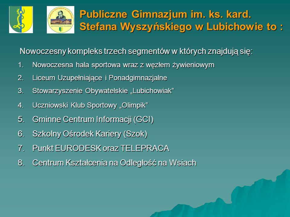 Publiczne Gimnazjum im. ks. kard. St. Wyszyńskiego w Lubichowie Diagnoza problemów dydaktycznych