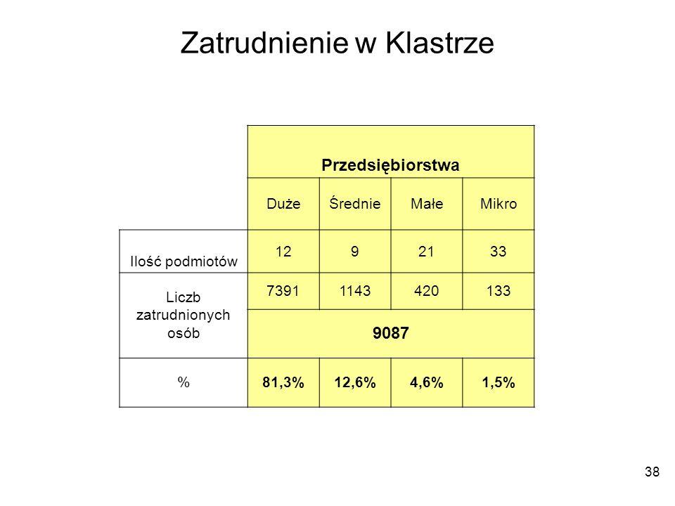 38 Zatrudnienie w Klastrze Przedsiębiorstwa DużeŚrednieMałeMikro Ilość podmiotów 1292133 Liczb zatrudnionych osób 73911143420133 9087 %81,3%12,6%4,6%1