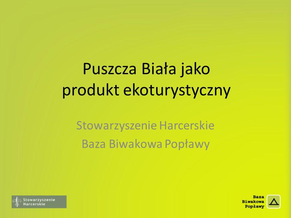 Puszcza Biała jako produkt ekoturystyczny Stowarzyszenie Harcerskie Baza Biwakowa Popławy