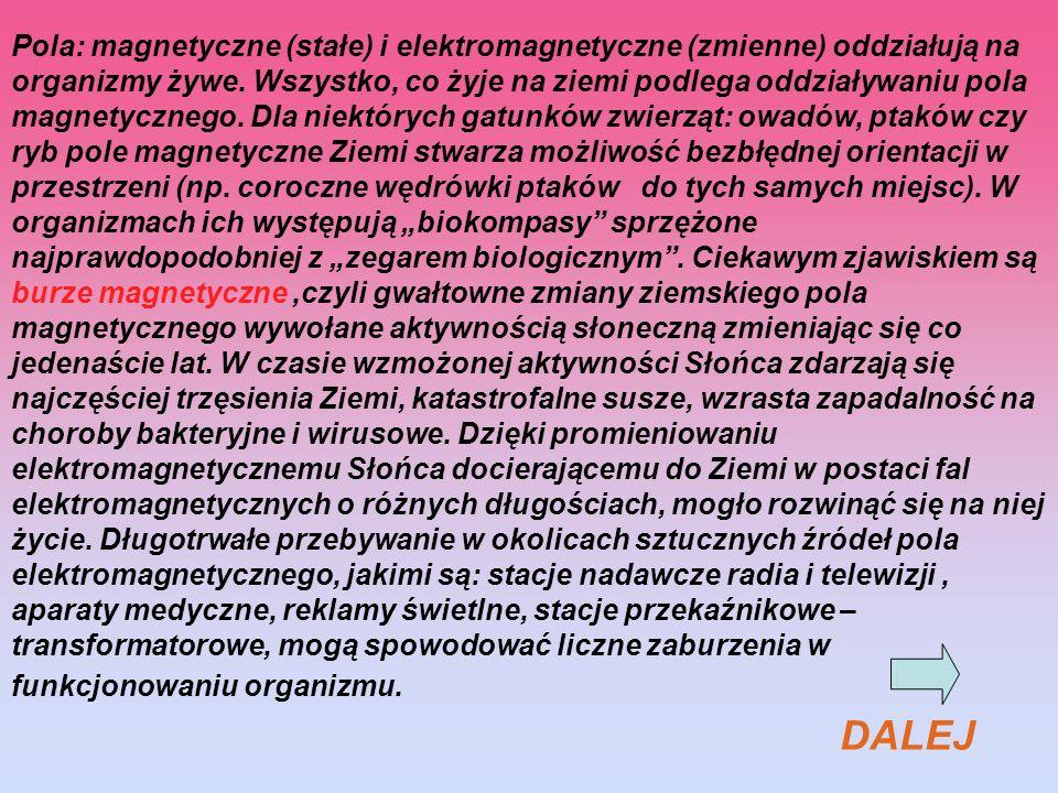 Pola: magnetyczne (stałe) i elektromagnetyczne (zmienne) oddziałują na organizmy żywe. Wszystko, co żyje na ziemi podlega oddziaływaniu pola magnetycz