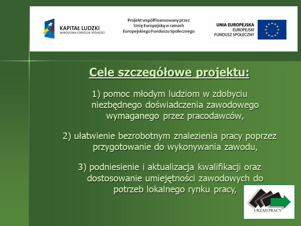 Projekt współfinansowany przez Unię Europejską w ramach Europejskiego Funduszu Społecznego Cele szczegółowe projektu: 1) pomoc młodym ludziom w zdobyc