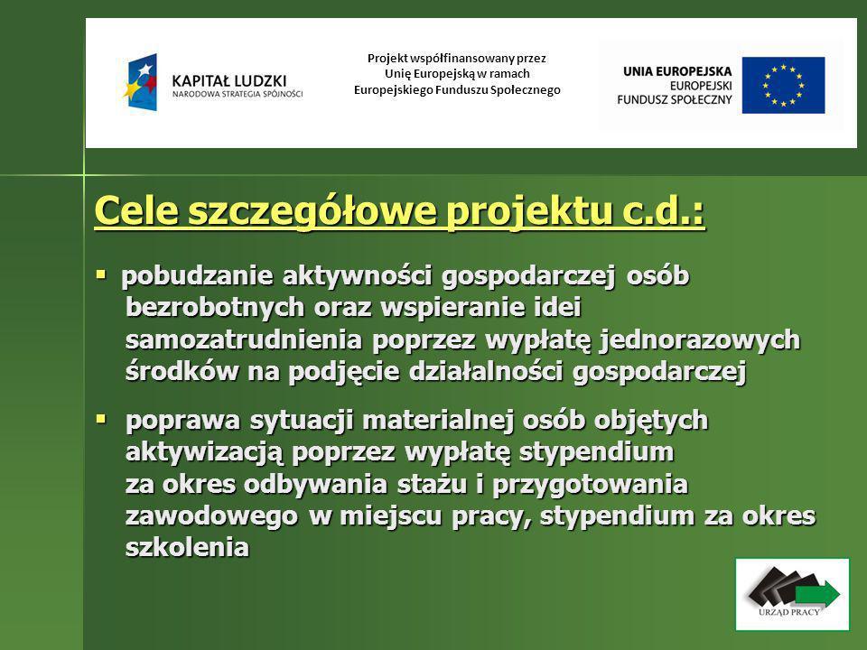 Projekt współfinansowany przez Unię Europejską w ramach Europejskiego Funduszu Społecznego Cele szczegółowe projektu c.d.: pobudzanie aktywności gospo