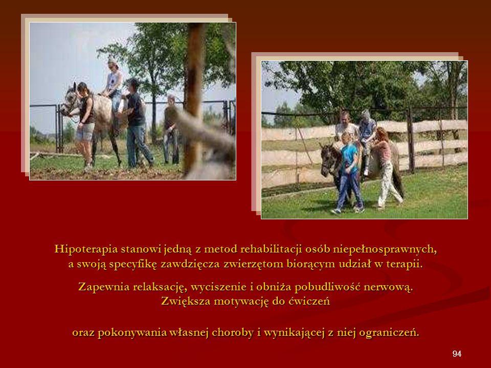 94 Hipoterapia stanowi jedną z metod rehabilitacji osób niepełnosprawnych, a swoją specyfikę zawdzięcza zwierzętom biorącym udział w terapii. Zapewnia