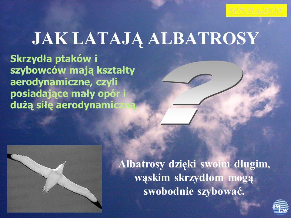 JAK LATAJĄ ALBATROSY Skrzydła ptaków i szybowców mają kształty aerodynamiczne, czyli posiadające mały opór i dużą siłę aerodynamiczną.