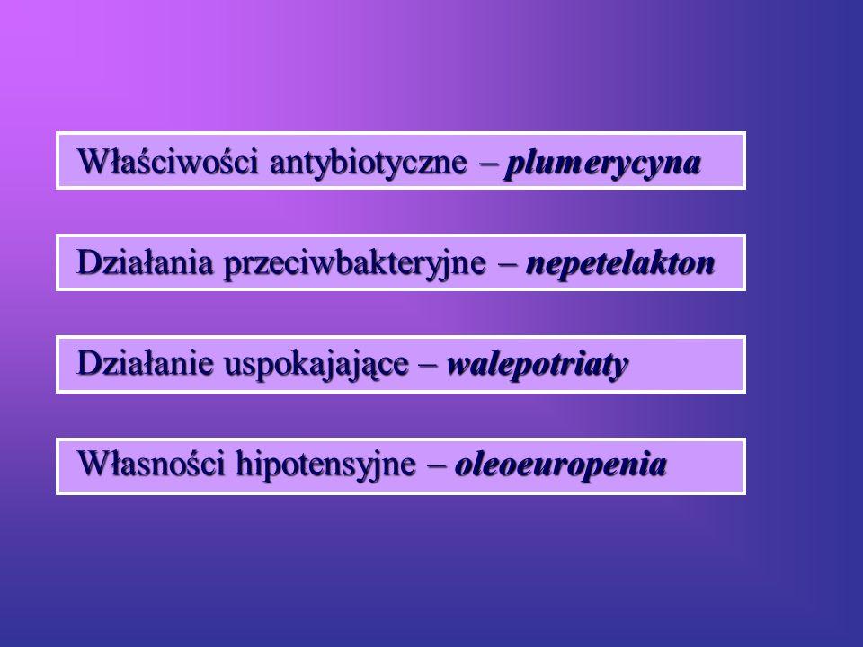 Właściwości antybiotyczne – plumerycyna Działania przeciwbakteryjne – nepetelakton Działanie uspokajające – walepotriaty Własności hipotensyjne – oleo