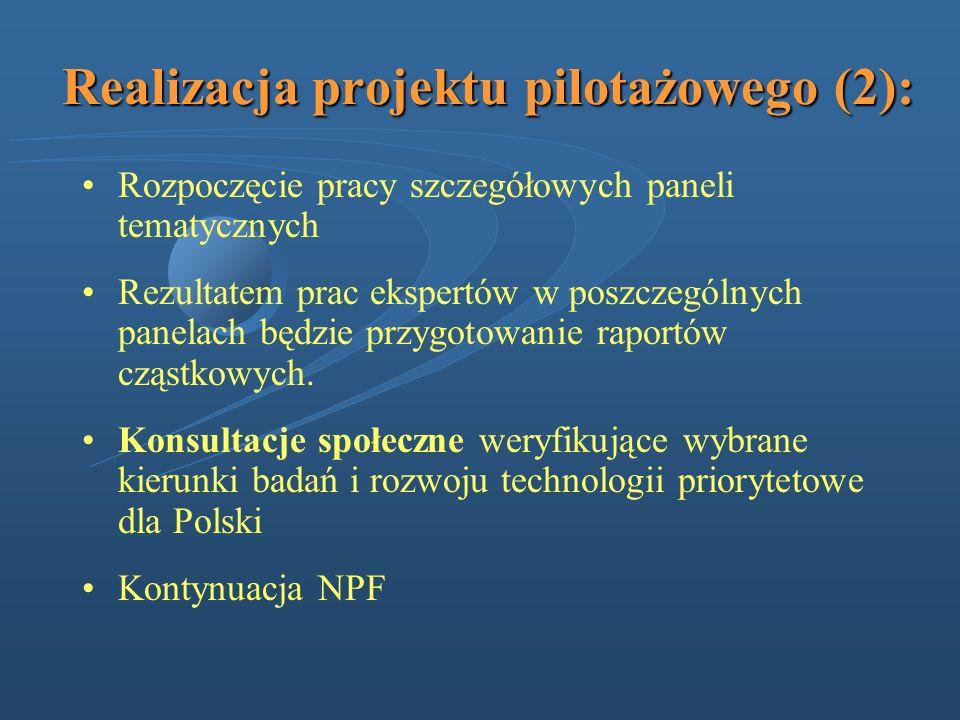 Realizacja projektu pilotażowego (2): Rozpoczęcie pracy szczegółowych paneli tematycznych Rezultatem prac ekspertów w poszczególnych panelach będzie p