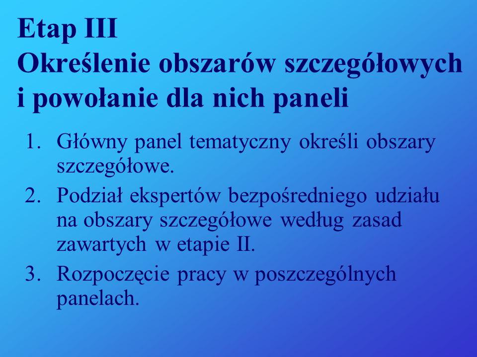 Etap III Określenie obszarów szczegółowych i powołanie dla nich paneli 1.Główny panel tematyczny określi obszary szczegółowe.