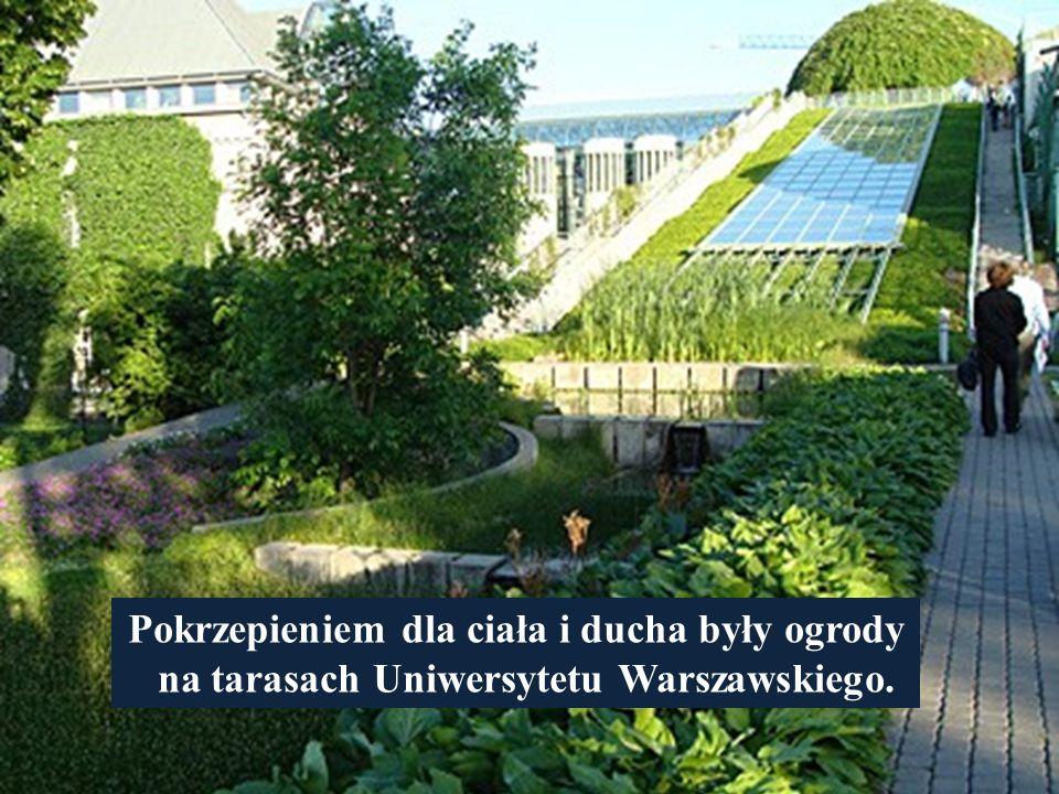 Pokrzepieniem dla ciała i ducha były ogrody na tarasach Uniwersytetu Warszawskiego.