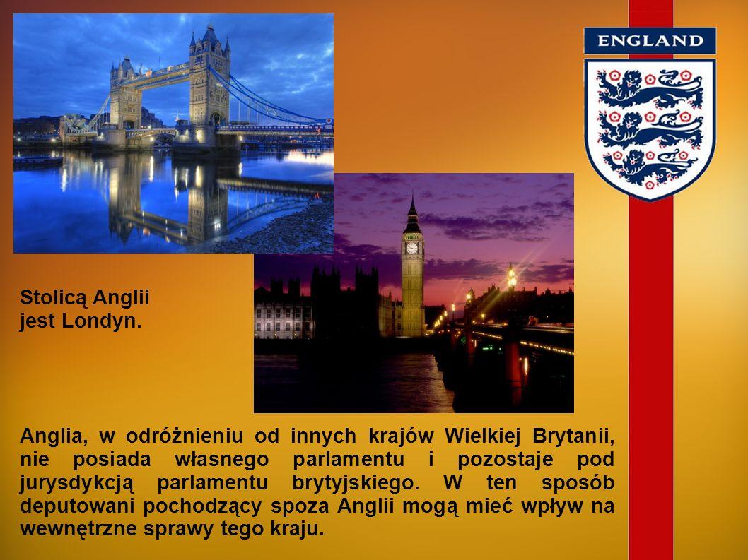 Anglia obejmuje południowo-wschodnią część wyspy Wielkiej Brytanii. Od północy graniczy ze Szkocją, a od zachodu z Walią. Od kontynentalnej części Eur