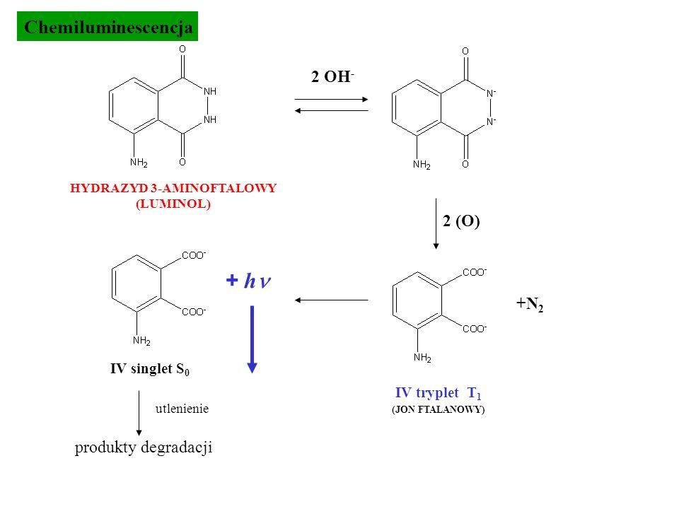 2 OH - 2 (O) HYDRAZYD 3-AMINOFTALOWY (LUMINOL) + h IV singlet S 0 produkty degradacji utlenienie IV tryplet T 1 (JON FTALANOWY) +N 2 Chemiluminescencj