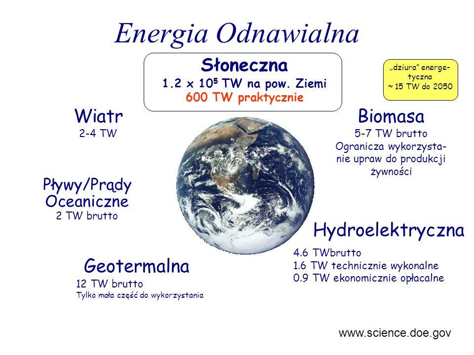 Energia Odnawialna Słoneczna 1.2 x 10 5 TW na pow. Ziemi 600 TW praktycznie Biomasa 5-7 TW brutto Ogranicza wykorzysta- nie upraw do produkcji żywnośc
