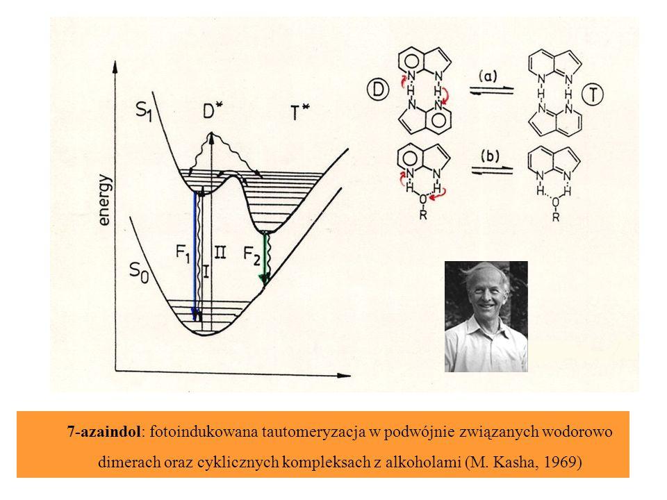 7-azaindol: fotoindukowana tautomeryzacja w podwójnie związanych wodorowo dimerach oraz cyklicznych kompleksach z alkoholami (M. Kasha, 1969)