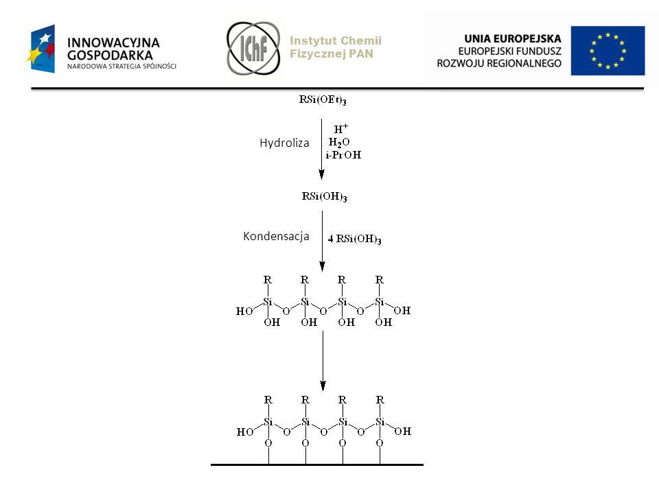 Hydroliza Kondensacja Instytut Chemii Fizycznej PAN