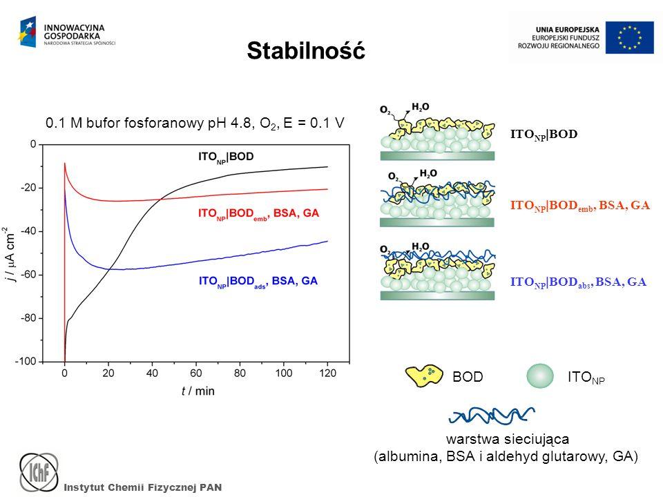 Instytut Chemii Fizycznej PAN Stabilność BODITO NP warstwa sieciująca (albumina, BSA i aldehyd glutarowy, GA) ITO NP BOD ITO NP BOD emb, BSA, GA ITO NP BOD abs, BSA, GA 0.1 M bufor fosforanowy pH 4.8, O 2, E = 0.1 V