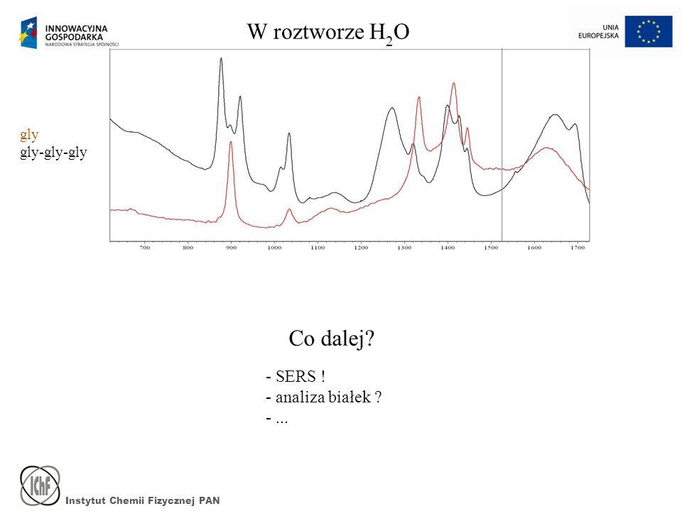 Instytut Chemii Fizycznej PAN W roztworze H 2 O gly gly-gly-gly Co dalej? - SERS ! - analiza białek ? -...