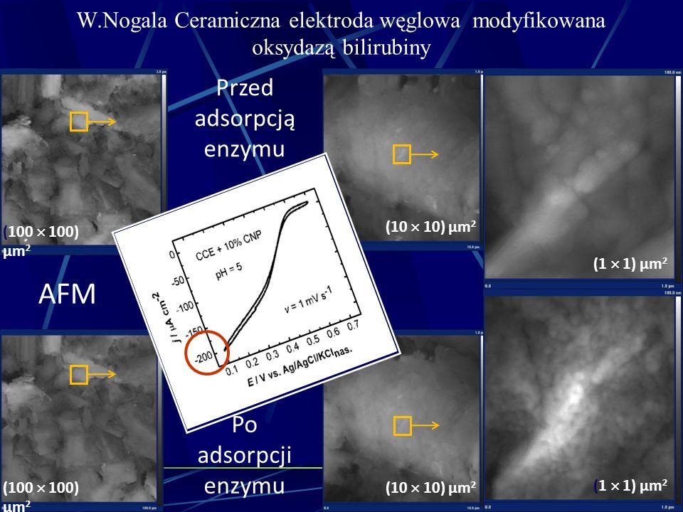 W.Nogala Ceramiczna elektroda węglowa modyfikowana oksydazą bilirubiny Przed adsorpcją enzymu Po adsorpcji enzymu AFM (1 1) µm 2 (100 100) µm 2 (10 10
