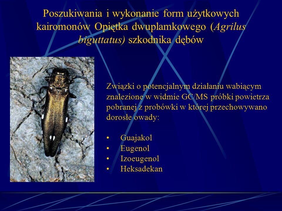 Poszukiwania i wykonanie form użytkowych kairomonów Opiętka dwuplamkowego (Agrilus biguttatus) szkodnika dębów Związki o potencjalnym działaniu wabiąc