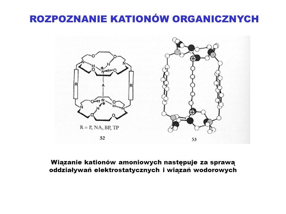 ROZPOZNANIE KATIONÓW ORGANICZNYCH Wiązanie kationów amoniowych następuje za sprawą oddziaływań elektrostatycznych i wiązań wodorowych