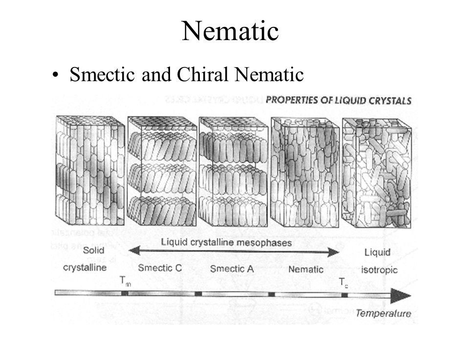 Nematic Smectic and Chiral Nematic