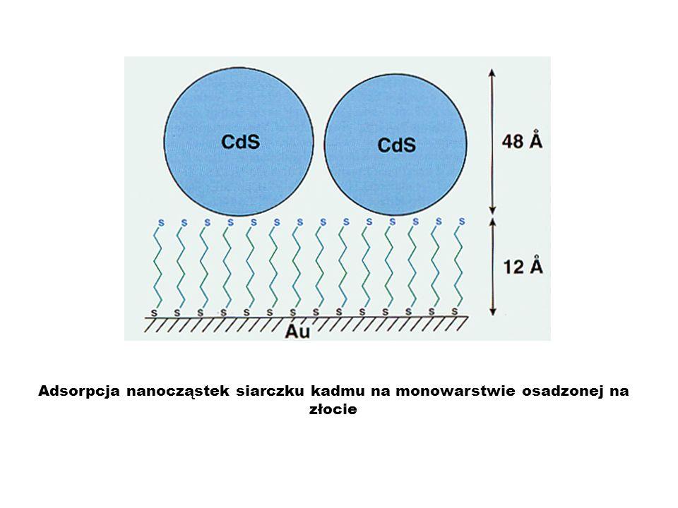 Adsorpcja nanocząstek siarczku kadmu na monowarstwie osadzonej na złocie