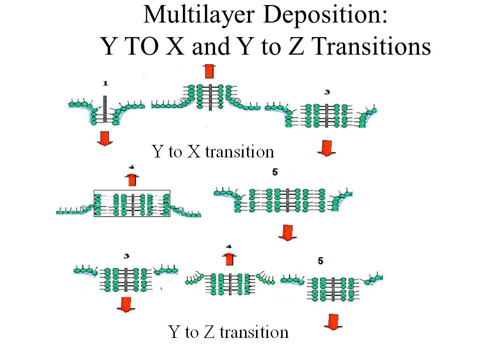 X, Y AND Z-TYPE DEPOSITION AND TRANSFER RATIO