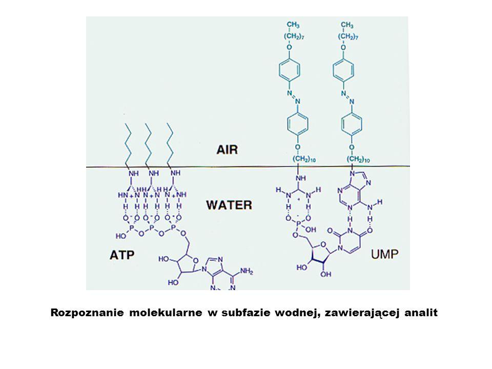 Rozpoznanie molekularne w subfazie wodnej, zawierającej analit