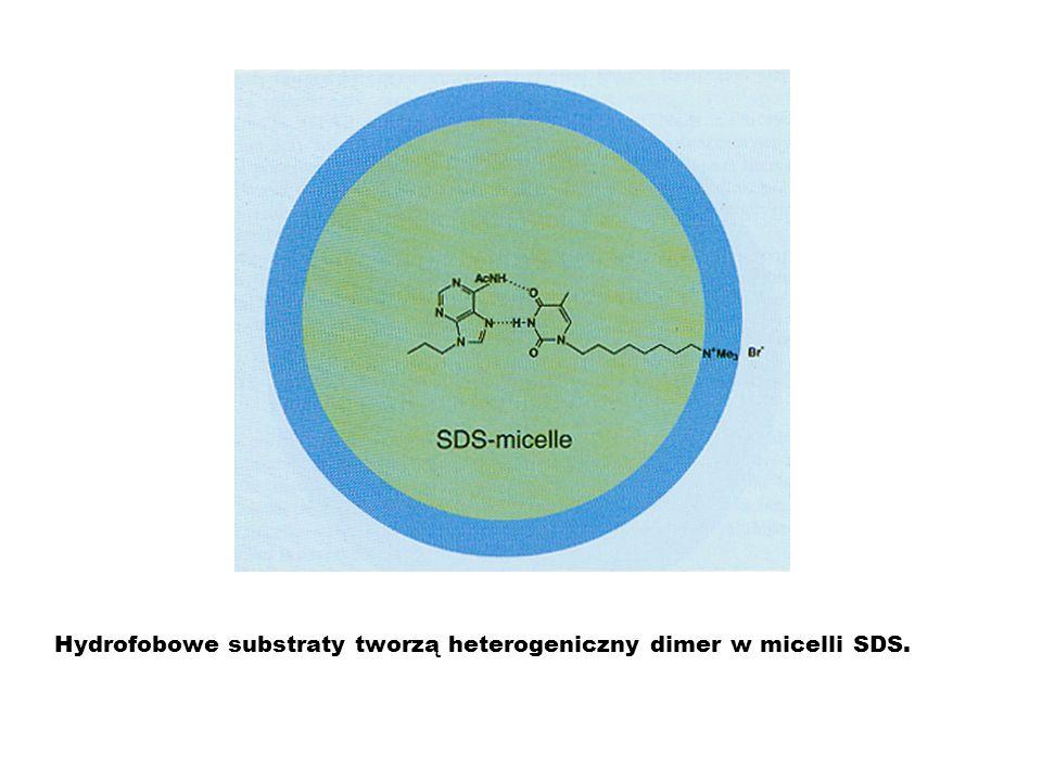 Hydrofobowe substraty tworzą heterogeniczny dimer w micelli SDS.