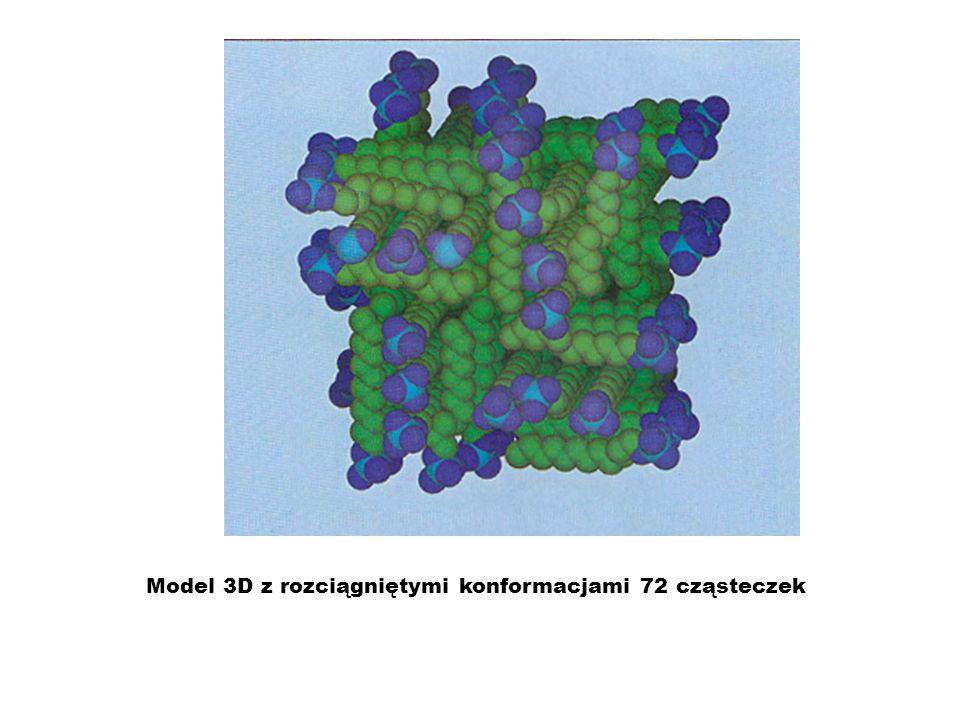 Model 3D z rozciągniętymi konformacjami 72 cząsteczek
