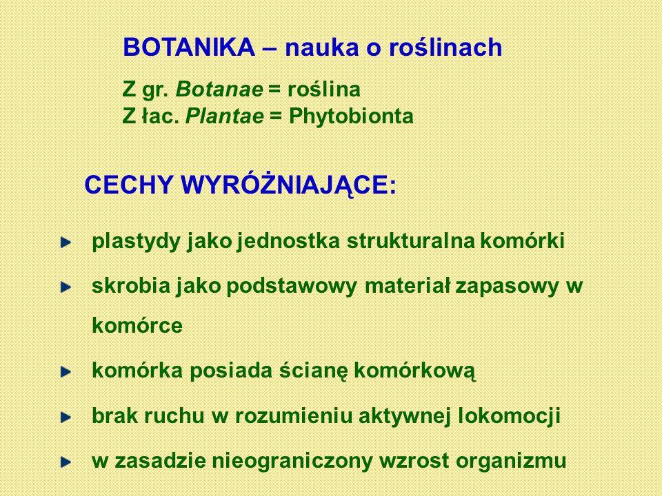 BOTANIKA – nauka o roślinach Z gr. Botanae = roślina Z łac. Plantae = Phytobionta CECHY WYRÓŻNIAJĄCE: plastydy jako jednostka strukturalna komórki skr