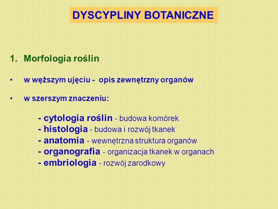 DYSCYPLINY BOTANICZNE 1.Morfologia roślin w węższym ujęciu - opis zewnętrzny organów w szerszym znaczeniu: - cytologia roślin - budowa komórek - histo