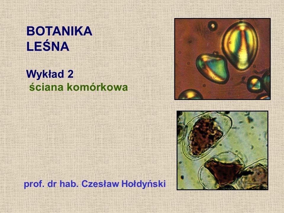 BOTANIKA LEŚNA Wykład 2 ściana komórkowa prof. dr hab. Czesław Hołdyński