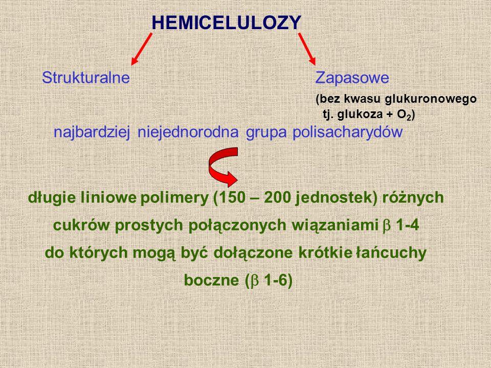 HEMICELULOZY Strukturalne Zapasowe (bez kwasu glukuronowego tj. glukoza + O 2 ) najbardziej niejednorodna grupa polisacharydów długie liniowe polimery