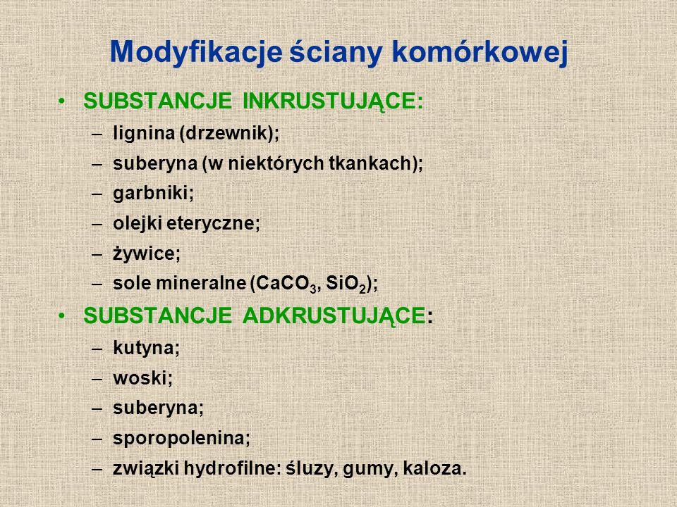 Modyfikacje ściany komórkowej SUBSTANCJE INKRUSTUJĄCE: –lignina (drzewnik); –suberyna (w niektórych tkankach); –garbniki; –olejki eteryczne; –żywice;