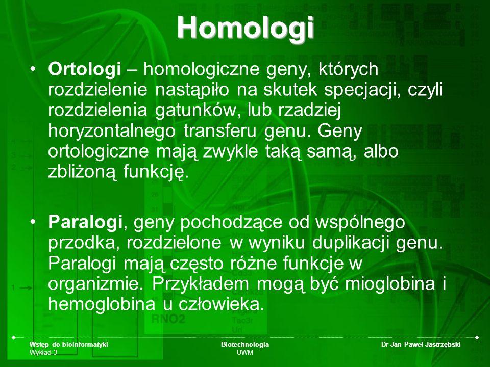 Wstęp do bioinformatyki Wykład 3 Biotechnologia UWM Dr Jan Paweł JastrzębskiHomologi Ortologi – homologiczne geny, których rozdzielenie nastąpiło na s