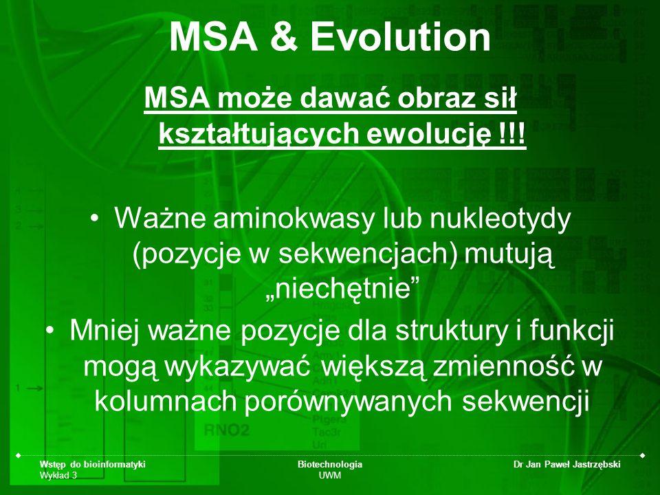 Wstęp do bioinformatyki Wykład 3 Biotechnologia UWM Dr Jan Paweł Jastrzębski MSA & Evolution MSA może dawać obraz sił kształtujących ewolucję !!! Ważn