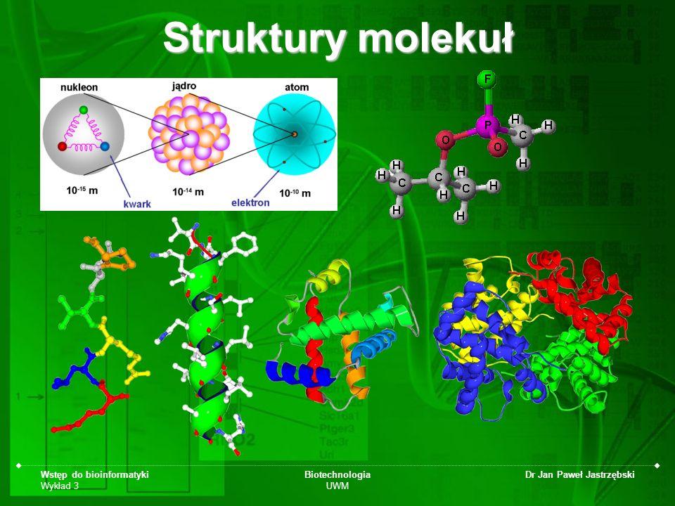 Wstęp do bioinformatyki Wykład 3 Biotechnologia UWM Dr Jan Paweł Jastrzębski Podstawowe typy wizualizacji molekularnej sticks (pręty, rurki -wiązania chemiczne)