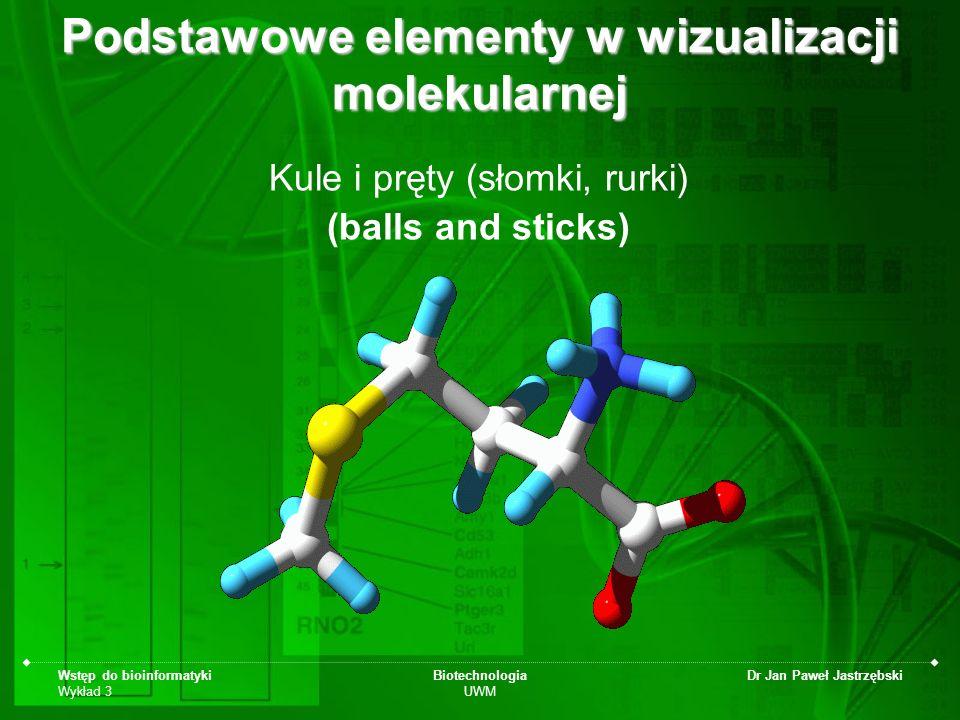 Wstęp do bioinformatyki Wykład 3 Biotechnologia UWM Dr Jan Paweł Jastrzębski Podstawowe elementy w wizualizacji molekularnej Kule i pręty (słomki, rur