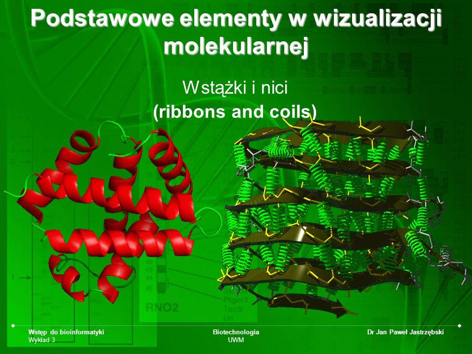Wstęp do bioinformatyki Wykład 3 Biotechnologia UWM Dr Jan Paweł Jastrzębski Podstawowe elementy w wizualizacji molekularnej Wstążki i nici (ribbons a