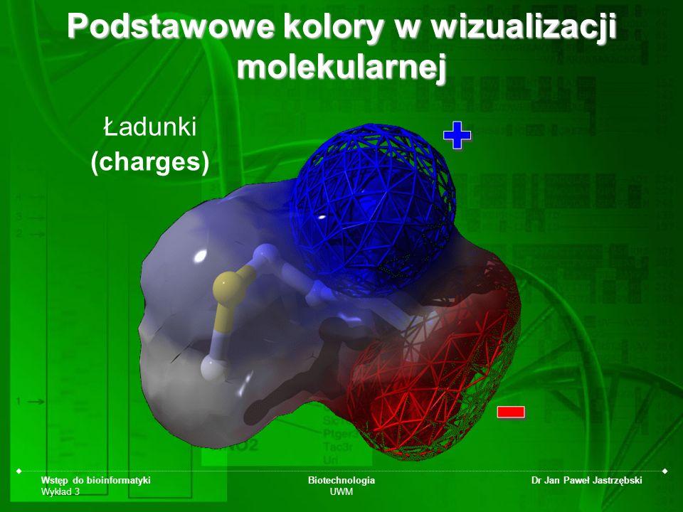 Wstęp do bioinformatyki Wykład 3 Biotechnologia UWM Dr Jan Paweł Jastrzębski Podstawowe kolory w wizualizacji molekularnej Ładunki (charges)