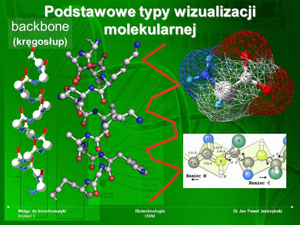 Wstęp do bioinformatyki Wykład 3 Biotechnologia UWM Dr Jan Paweł Jastrzębski Podstawowe typy wizualizacji molekularnej backbone (kręgosłup)