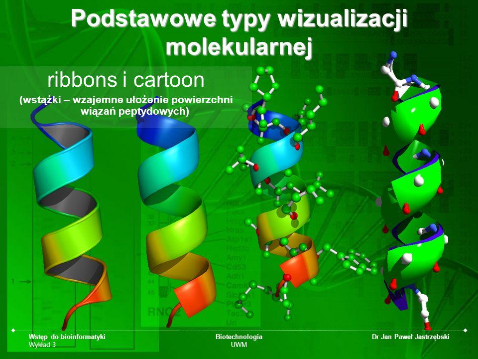 Wstęp do bioinformatyki Wykład 3 Biotechnologia UWM Dr Jan Paweł Jastrzębski Podstawowe typy wizualizacji molekularnej ribbons i cartoon (wstążki – wz