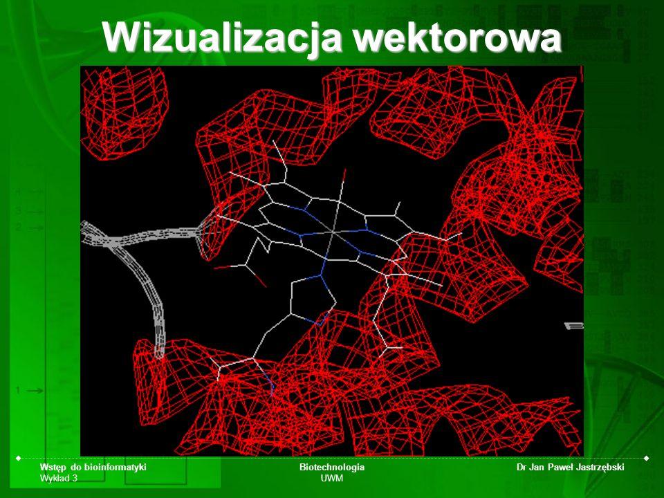 Wstęp do bioinformatyki Wykład 3 Biotechnologia UWM Dr Jan Paweł Jastrzębski Wizualizacja wektorowa