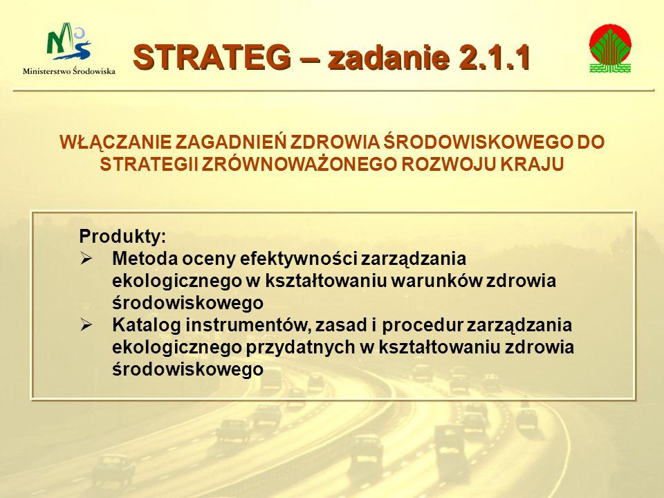 WŁĄCZANIE ZAGADNIEŃ ZDROWIA ŚRODOWISKOWEGO DO STRATEGII ZRÓWNOWAŻONEGO ROZWOJU KRAJU STRATEG – zadanie 2.1.1 Produkty: Metoda oceny efektywności zarzą